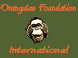 Otangutan Foundation International